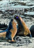 Happy Day (met ketting)_