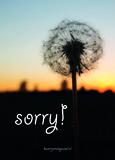 Sorry_