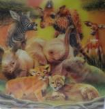 3d kaart safari
