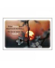 Elke droom kan waarheid worden....