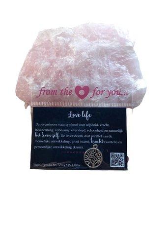 Cadeau kaartje met symbool (love life)