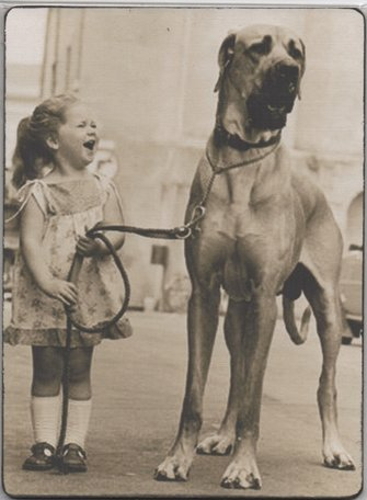 Bordje, meisje met hond