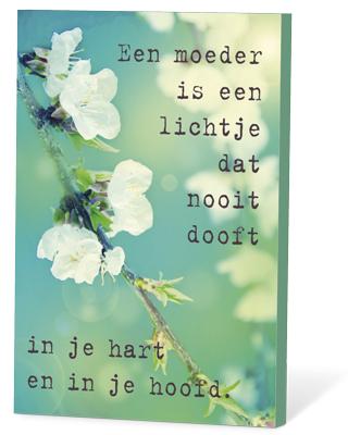 Een moeder is een lichtje dat nooit dooft ... (zaden en een kaartje)