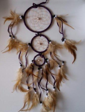 Dromenvanger (paars) met 3 ringen