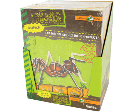 3d puzzel insect