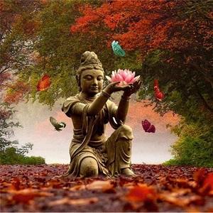 Diamond painting Boeddha met bloem