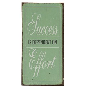 Magneet, Succes is dependent on Effort