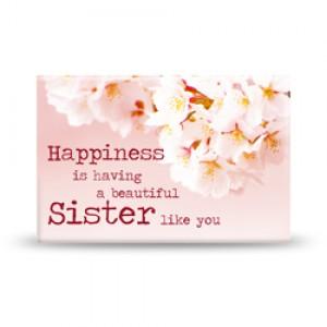 Magneet, Sister