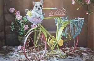 Diamond Painting (volledig) fiets