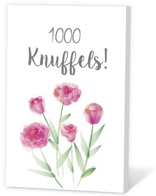 1000 knuffels