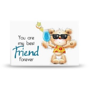 Magneet You Are My Best Friend Forever Leukdoordebrievenbus