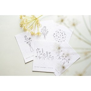 Bloei/groei papier bijenbloemen