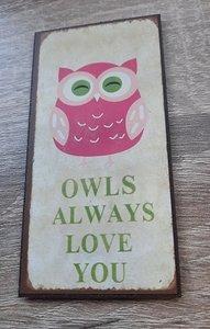 Magneet, owls always love you
