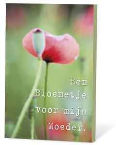 Een bloemetje voor mijn moeder (zaden en een kaartje)