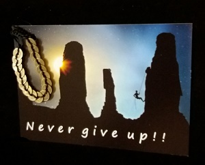Never give up met geluksmuntarmband