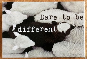 Magneet, dare to be different