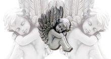 Waxine cover, engel