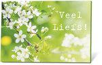 Veel-Liefs(zaden-en-een-kaartje)