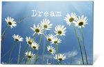 DREAM(zaden-en-een-kaartje)