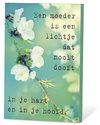 Een-moeder-is-een-lichtje-dat-nooit-dooft-...-(zaden-en-een-kaartje)