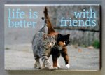 Magneet, life is better with friends